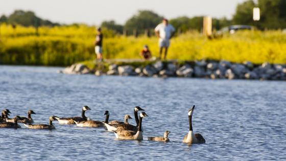 Experience Nebraska Outdoors Amp Nature Visit Nebraska