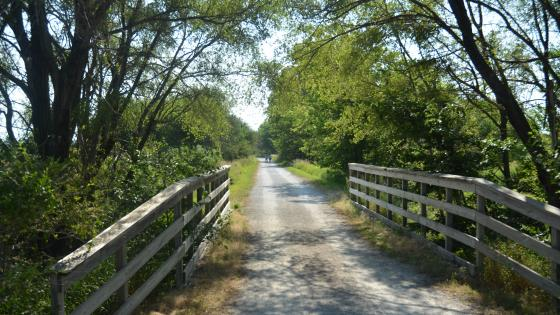 MoPac East Trail