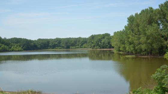 Tanglewood Lake Wildlife Management Area